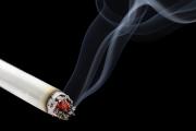 Seks i fajki
