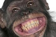 Uśmiechnięty onanista