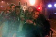 Pijani imprezowicze ukradli lamę