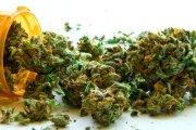 Legalne sklepy z marihuaną!