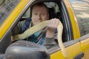 Pyton w taksówce