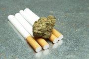 THC a pojemność płuc