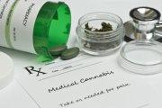Organizacje rządowe USA przyznają: marihuana niszczy komórki rakowe