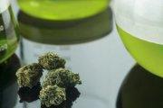 Odkryto kolejne korzystne właściwości marihuany!