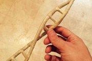 Rzeźby tworzone z jointów