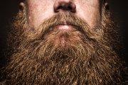 Jak żyć z brodą