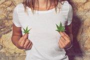 Zobacz co ci grozi za posiadanie marihuany