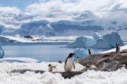 Polska Stacja Antarktyczna prowadzi rekrutację do pracy