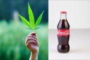 Coca-Cola z marihuaną? Marka właśnie bada rynek konopi