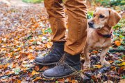 Szukasz butów na jesienny i zimowy trekking? Oto na co warto zwrócić uwagę