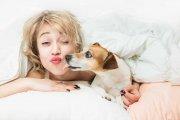 Kobietom śpi się lepiej w towarzystwie psa niż partnera