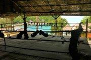 Turniej MMA jak z filmu. Odbędzie się na prywatnej wyspie