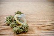 Bzykanie po marihuanie. Jakie są skutki palenia konopi przed seksem