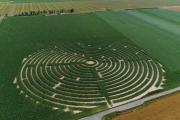 Kręgi w kukurydzy na Dolnym Śląsku. To nie ufo, a labirynty