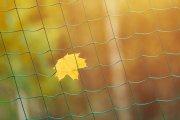Nieoczywiste sporty na jesień. Z tymi akcesoriami będziesz wymiatał