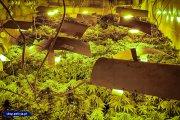 Obok domu miał podziemną plantację marihuany