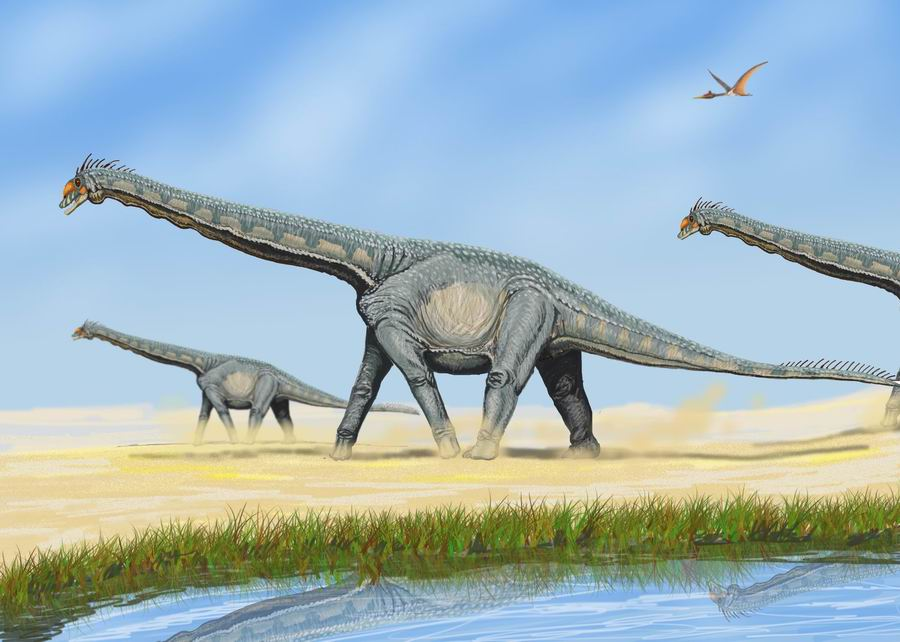 AlamosaurusDB.jpg